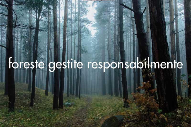 vantaggi del legno: rinnovabile